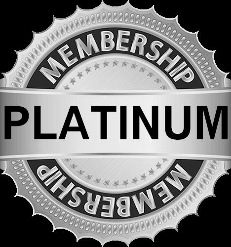 User Level silver for electromarket